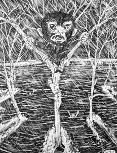 105 El origen de los monos